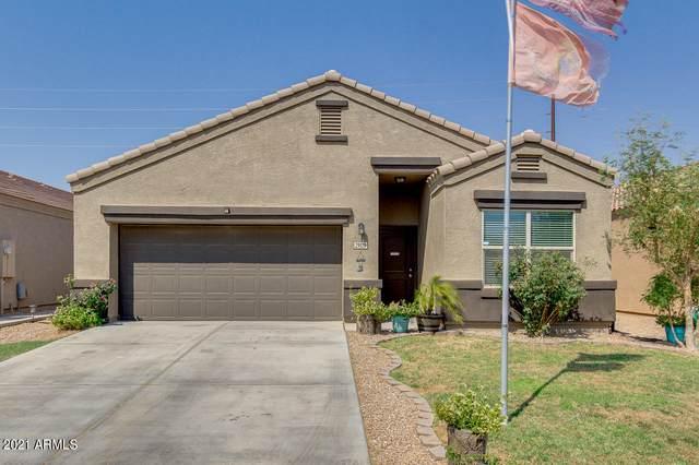 29129 N Fire Agate Road, San Tan Valley, AZ 85143 (MLS #6251667) :: Midland Real Estate Alliance