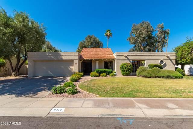 8414 E Shetland Trail, Scottsdale, AZ 85258 (MLS #6251929) :: Yost Realty Group at RE/MAX Casa Grande
