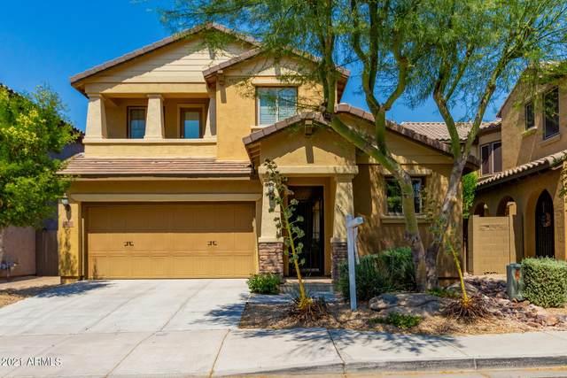 21622 N 38TH Way, Phoenix, AZ 85050 (MLS #6252205) :: ASAP Realty