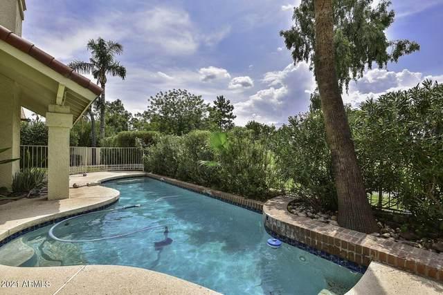 19416 N 71ST Avenue, Glendale, AZ 85308 (MLS #6252370) :: Yost Realty Group at RE/MAX Casa Grande