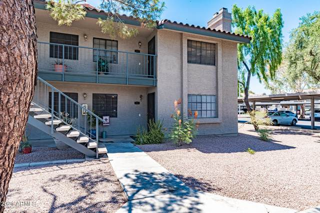 533 W Guadalupe Road #1049, Mesa, AZ 85210 (MLS #6252526) :: Conway Real Estate