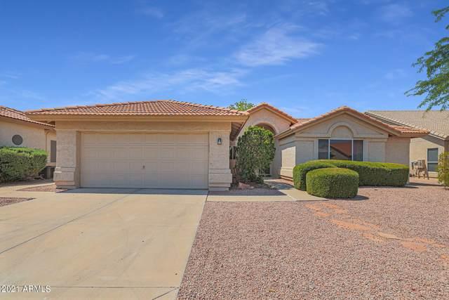 9501 E Rocky Lake Drive, Sun Lakes, AZ 85248 (MLS #6252555) :: Yost Realty Group at RE/MAX Casa Grande