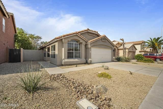 1153 W Bluebird Drive, Chandler, AZ 85286 (MLS #6252911) :: Walters Realty Group