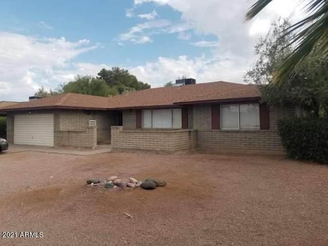 1103 E Watson Drive, Tempe, AZ 85283 (MLS #6253151) :: Yost Realty Group at RE/MAX Casa Grande