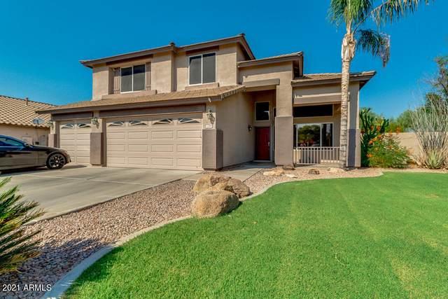 1288 E Eli Court, Gilbert, AZ 85295 (MLS #6253166) :: The Daniel Montez Real Estate Group