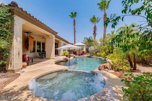 28319 N 123RD Lane, Peoria, AZ 85383 (MLS #6253308) :: The Daniel Montez Real Estate Group