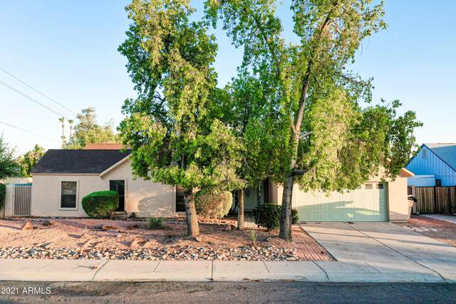 6301 W Kings Avenue, Glendale, AZ 85306 (MLS #6253419) :: The Everest Team at eXp Realty