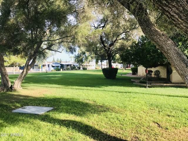 10960 N 67th Avenue #160, Glendale, AZ 85301 (MLS #6253555) :: Arizona 1 Real Estate Team