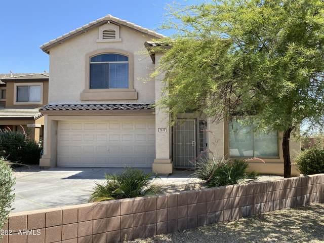 2533 W Big Oak Street, Phoenix, AZ 85085 (MLS #6254125) :: Klaus Team Real Estate Solutions
