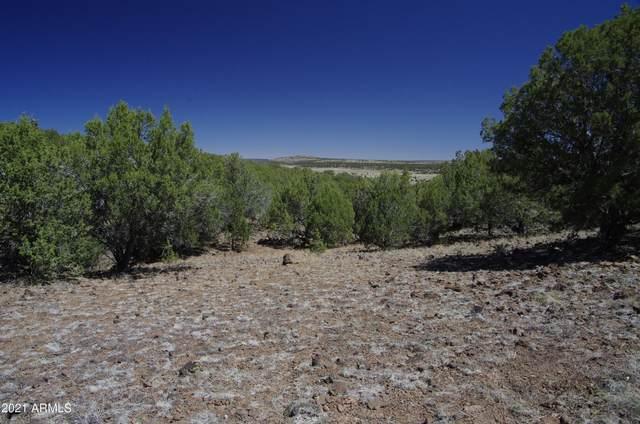 298 N Edwards Ranch Road, Ash Fork, AZ 86320 (MLS #6254455) :: Executive Realty Advisors