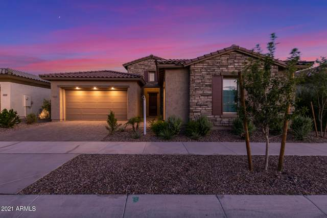 10229 E Tiger Lily Avenue, Mesa, AZ 85212 (MLS #6254567) :: Balboa Realty