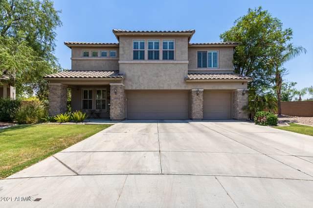 4951 S Dante, Mesa, AZ 85212 (MLS #6254589) :: Yost Realty Group at RE/MAX Casa Grande