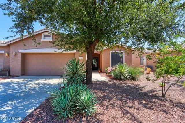 20543 N Lemon Drop Drive, Maricopa, AZ 85138 (MLS #6254708) :: Elite Home Advisors