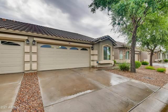 16620 S 48TH Street #96, Phoenix, AZ 85048 (MLS #6255223) :: Long Realty West Valley