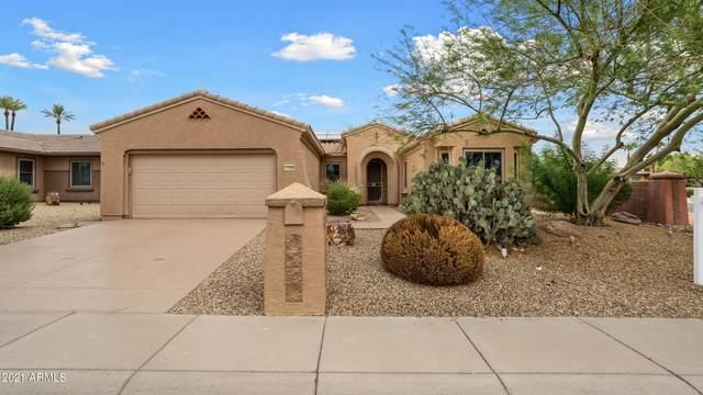 17100 W Calistoga Drive, Surprise, AZ 85387 (MLS #6255411) :: Executive Realty Advisors