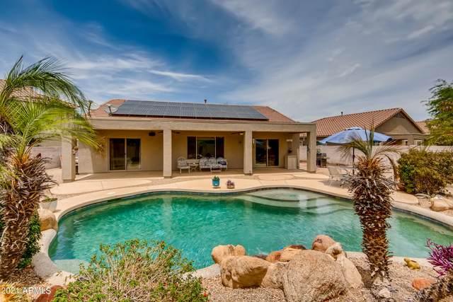 14259 W Crocus Drive, Surprise, AZ 85379 (MLS #6255476) :: Yost Realty Group at RE/MAX Casa Grande