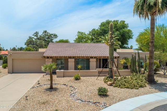 8538 E San Lorenzo Drive, Scottsdale, AZ 85258 (MLS #6255496) :: Yost Realty Group at RE/MAX Casa Grande