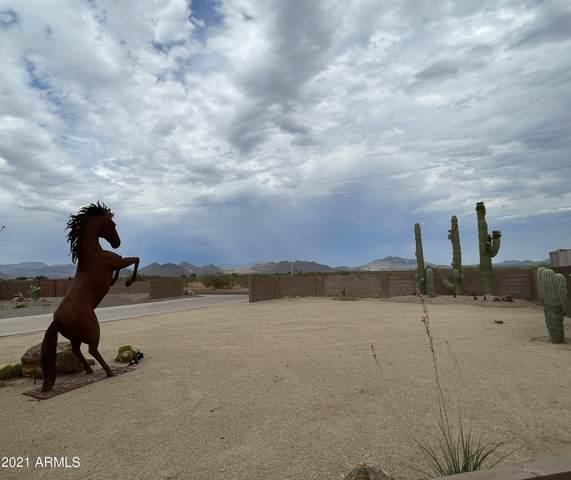 1315 E Tumbleweed Drive, Phoenix, AZ 85085 (MLS #6255576) :: Dave Fernandez Team | HomeSmart