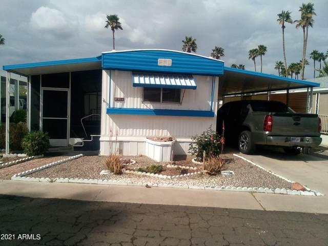 7300 N 51ST Avenue B238, Glendale, AZ 85301 (MLS #6256710) :: Dave Fernandez Team | HomeSmart