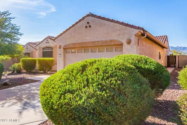 9960 E Prospector Drive, Gold Canyon, AZ 85118 (MLS #6256741) :: Yost Realty Group at RE/MAX Casa Grande
