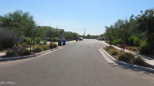 9144 W Meadowbrook Avenue, Phoenix, AZ 85037 (MLS #6256787) :: Klaus Team Real Estate Solutions