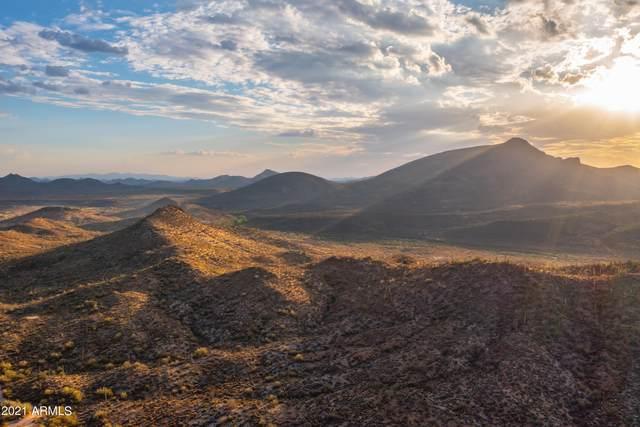 44500 N Cottonwood Canyon Road, Cave Creek, AZ 85331 (MLS #6256948) :: Howe Realty