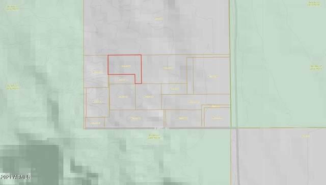 378XX S 305th Avenue, Arlington, AZ 85322 (MLS #6256974) :: The Laughton Team