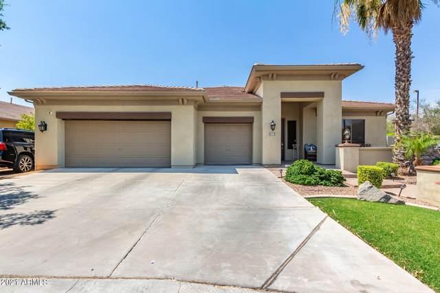 1035 W Bosal Drive, Gilbert, AZ 85233 (MLS #6257081) :: Yost Realty Group at RE/MAX Casa Grande