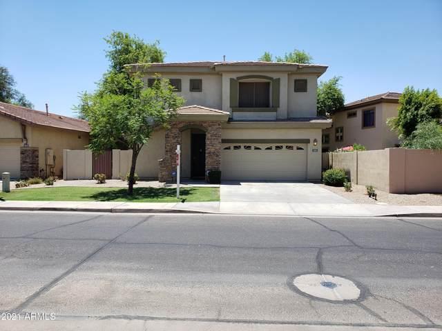 1925 W Olive Way, Chandler, AZ 85248 (MLS #6257097) :: Elite Home Advisors
