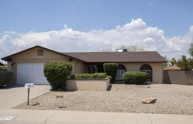 802 W Kerry Lane, Phoenix, AZ 85027 (MLS #6257136) :: Yost Realty Group at RE/MAX Casa Grande