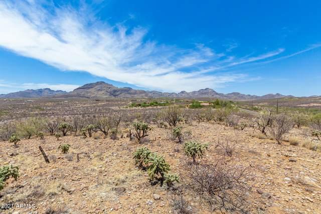 TBD Trujillo Trail, Tubac, AZ 85646 (MLS #6258291) :: The Laughton Team