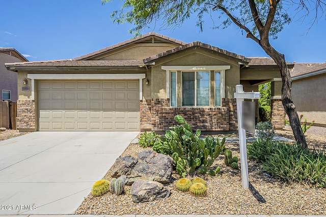 1310 E Sugey Court, San Tan Valley, AZ 85143 (MLS #6258757) :: Yost Realty Group at RE/MAX Casa Grande