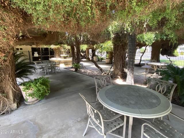 10960 N 67th Avenue #45, Glendale, AZ 85301 (MLS #6258874) :: Arizona 1 Real Estate Team