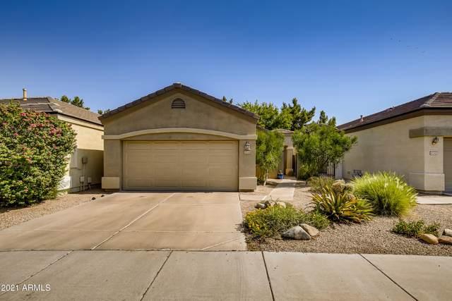 3240 E Fremont Road, Phoenix, AZ 85042 (MLS #6258909) :: Yost Realty Group at RE/MAX Casa Grande