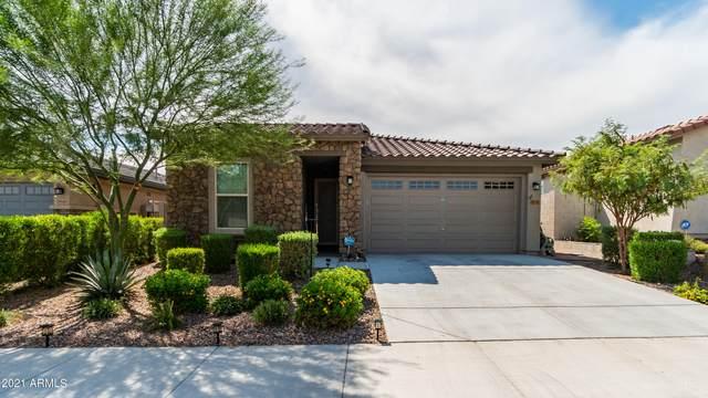 29978 N 115TH Glen, Peoria, AZ 85383 (MLS #6258921) :: Yost Realty Group at RE/MAX Casa Grande