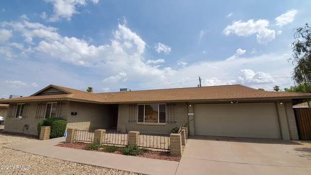 3417 E Beryl Lane, Phoenix, AZ 85028 (MLS #6258954) :: Yost Realty Group at RE/MAX Casa Grande