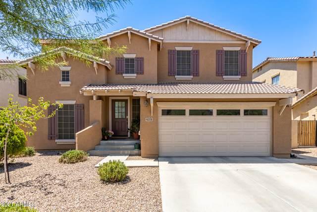 4031 E Sidewinder Court, Gilbert, AZ 85297 (MLS #6259067) :: Dave Fernandez Team | HomeSmart