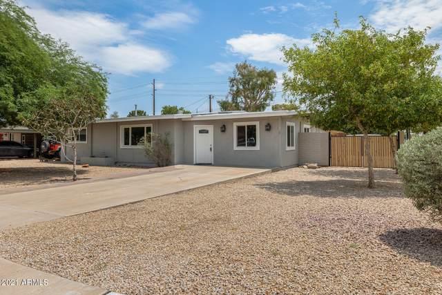 6501 N 23RD Drive, Phoenix, AZ 85015 (MLS #6259140) :: Yost Realty Group at RE/MAX Casa Grande