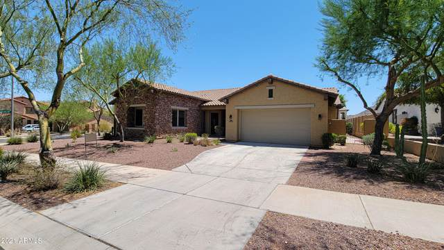 21419 W Brittle Bush Lane, Buckeye, AZ 85396 (MLS #6259511) :: Yost Realty Group at RE/MAX Casa Grande