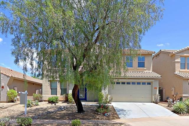 3006 W Via De Pedro Miguel, Phoenix, AZ 85086 (MLS #6259586) :: Conway Real Estate