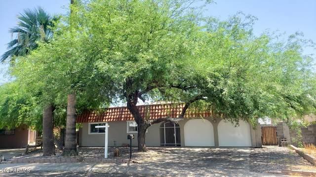 12025 N 29TH Avenue, Phoenix, AZ 85029 (MLS #6259619) :: Yost Realty Group at RE/MAX Casa Grande