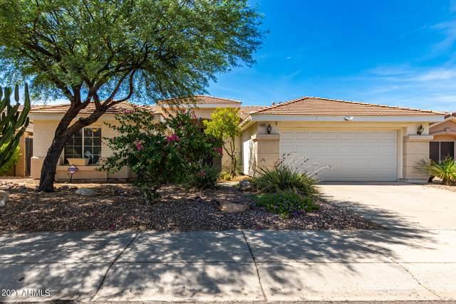 3349 E Escuda Road, Phoenix, AZ 85050 (MLS #6259711) :: Executive Realty Advisors