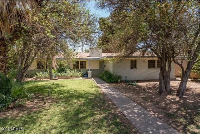 657 W Toledo Street, Chandler, AZ 85225 (MLS #6259981) :: Yost Realty Group at RE/MAX Casa Grande