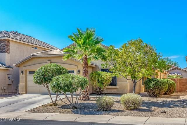44355 W Oster Drive, Maricopa, AZ 85138 (MLS #6261174) :: Yost Realty Group at RE/MAX Casa Grande