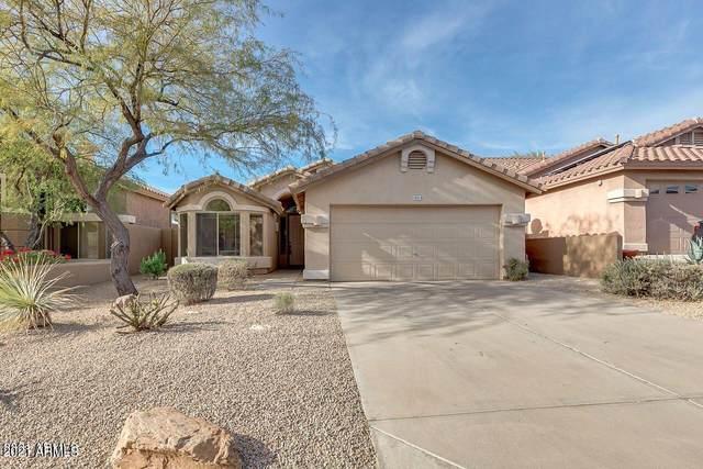 10518 E Star Of The Desert Drive, Scottsdale, AZ 85255 (MLS #6261346) :: Long Realty West Valley