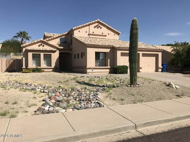 3031 N 64TH Street, Mesa, AZ 85215 (MLS #6261689) :: Elite Home Advisors