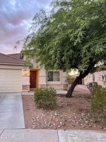 1382 S 226TH Drive, Buckeye, AZ 85326 (MLS #6261724) :: Yost Realty Group at RE/MAX Casa Grande