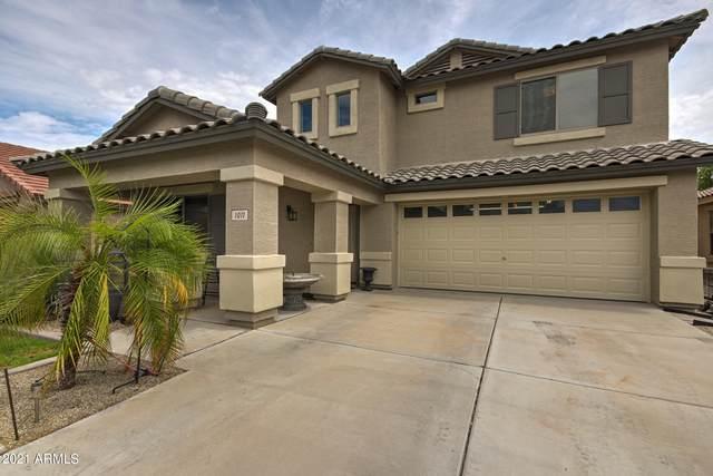 1011 E Palomino Way, San Tan Valley, AZ 85143 (MLS #6262573) :: Klaus Team Real Estate Solutions
