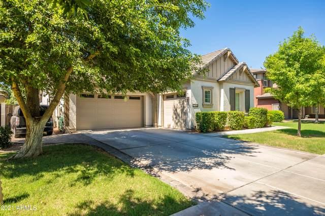 3768 E Morrison Ranch Parkway, Gilbert, AZ 85296 (MLS #6262906) :: Yost Realty Group at RE/MAX Casa Grande