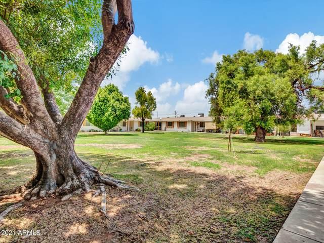 10364 W Deanne Drive, Sun City, AZ 85351 (MLS #6263739) :: Dave Fernandez Team | HomeSmart